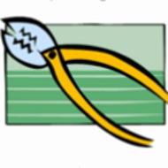TutorVista  Online Tutoring  Homework Help in Math