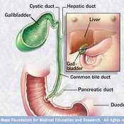 MAYO: Laparoscopic Gallbladder Removal - Exposing the Cystic Duct and Artery