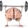 Pre-Algebra Brain
