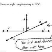 Unit 2- Angle Relationships