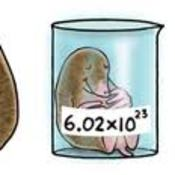 Unit 7 Chemical Quantities