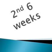 2nd 6 weeks - Mrs. Morrison