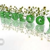 Ecology: Interdependency of Life