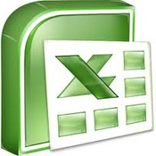 Software Skills:  Excel 2010