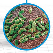 Microbiology Unit Videos