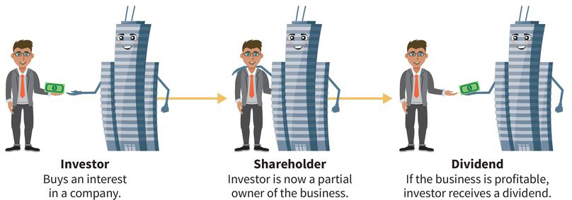 an infographic showing the relationship between an investor (a man) and a company (a building): (step one) investor buys interest in the company, (step two) investor is a partial owner, and (step three) investor gets a dividend if the company makes a profit