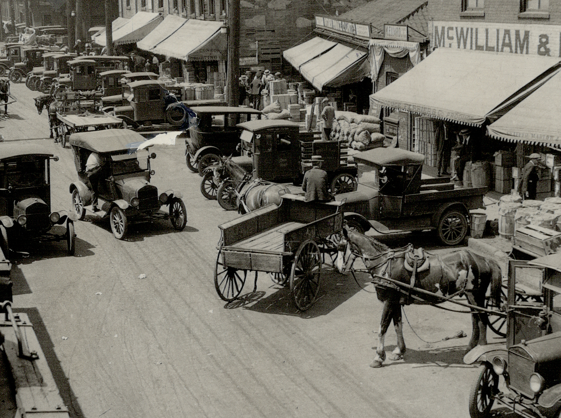 1900: Bustling market. Cars, trucks, and horse-drawn wagons competed for space at a fruit and vegetable market.