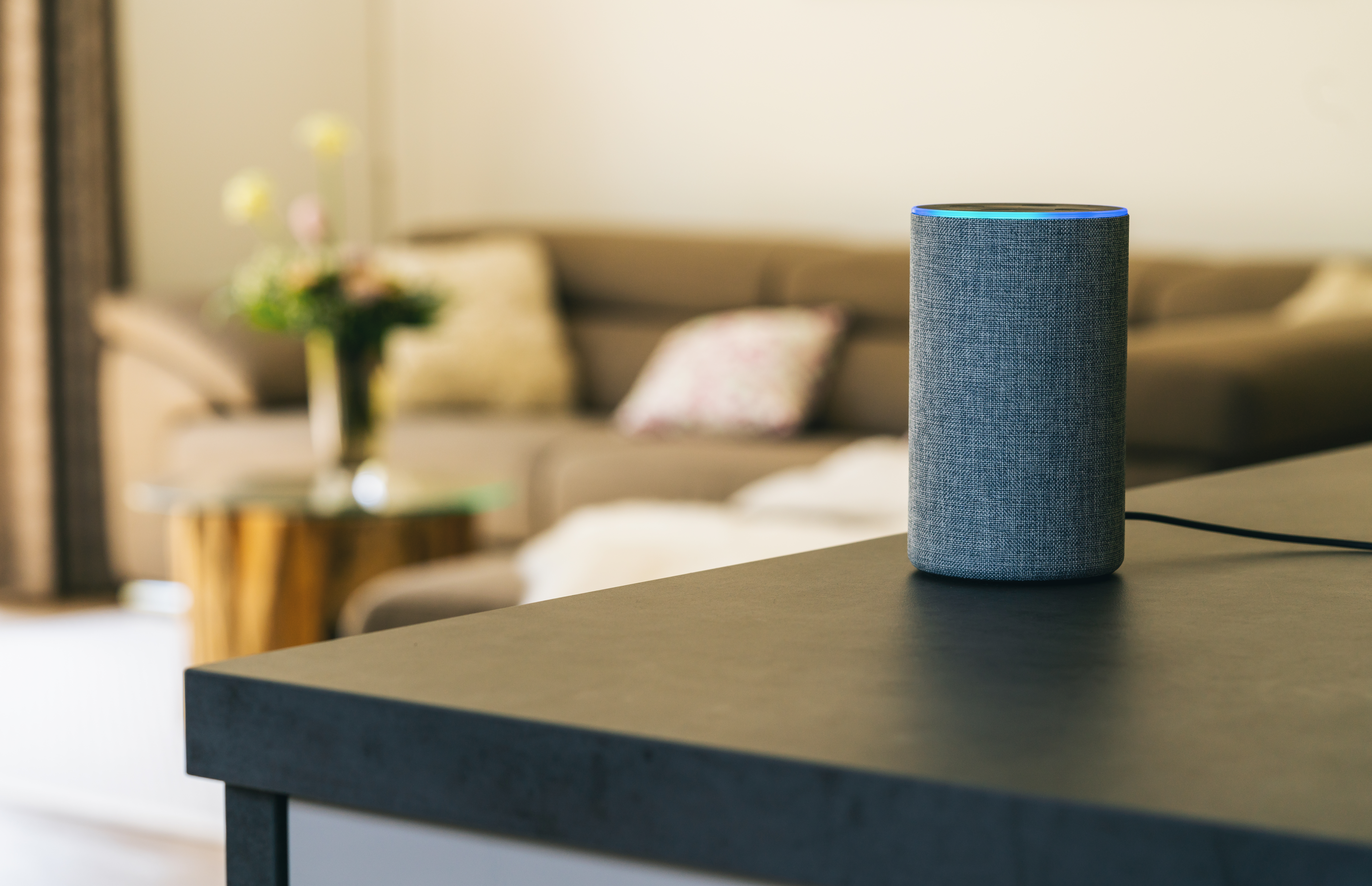 Voice controlled speaker and personal assistant on a table in a home.