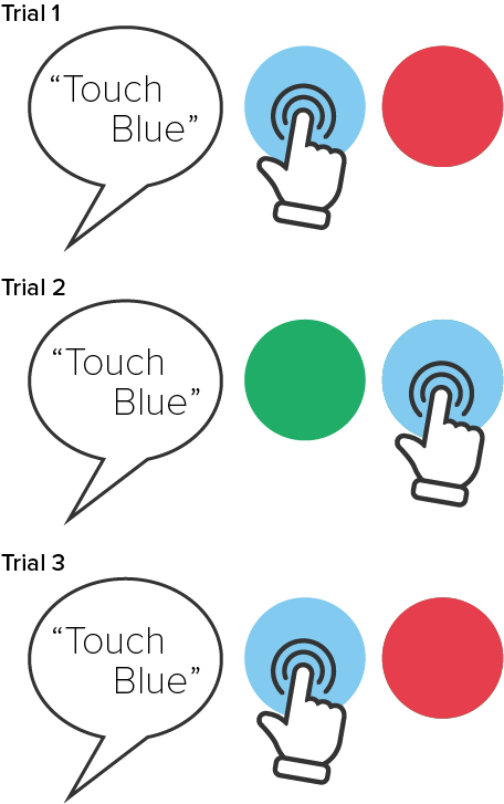 Step 3: Touch Blue (with red and green distractors)