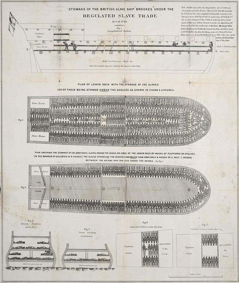 Image of plans of a slave ship