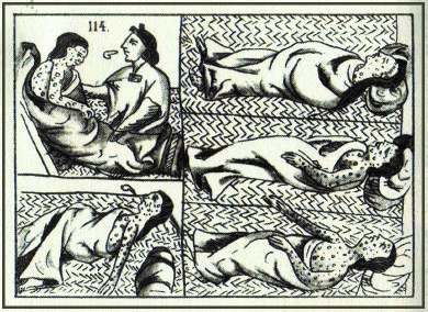 This 16th-century Aztec drawing shows the suffering of a typical victim of smallpox. Smallpox and other contagious diseases brought by European explorers decimated Indian populations in the Americas.