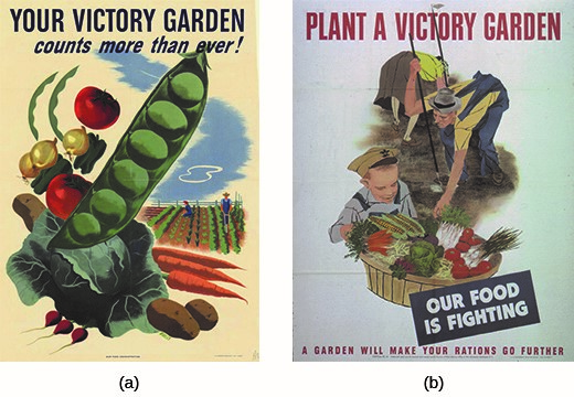 Federal advertisements indicated that victory gardens were a way to stretch rations and ensure that troops would receive all of the food they needed.