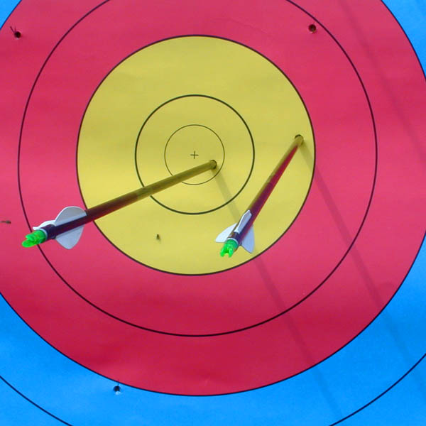 Narrow Your TopicNarrowing your topic is like aiming for the bull's-eye on an archery target.