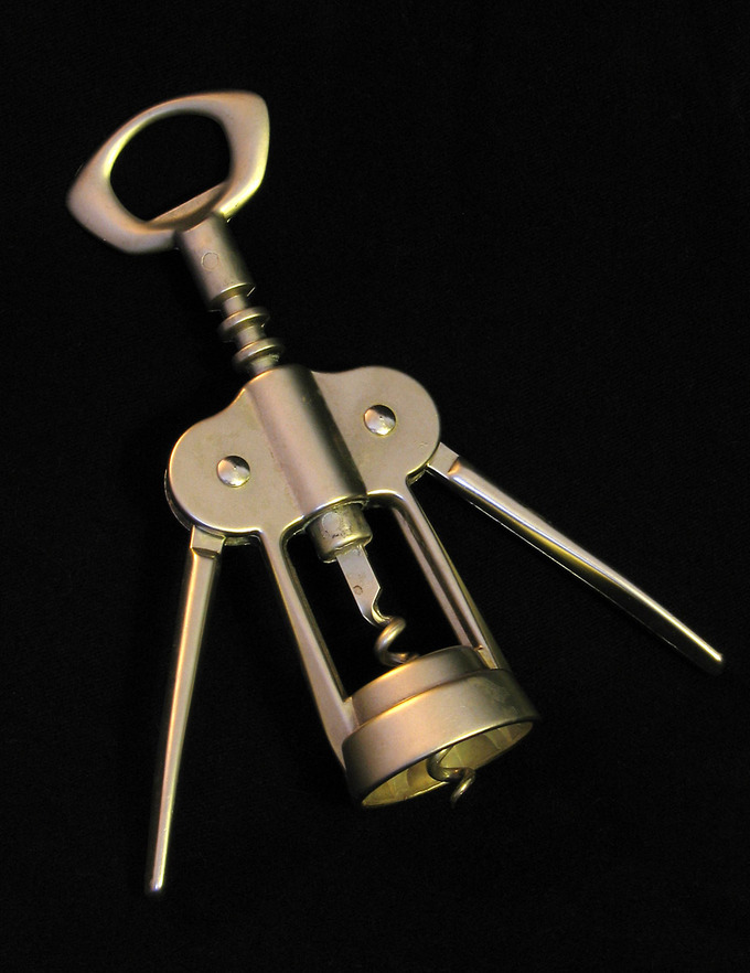 Specific PurposeA speech should have a specific purpose, just as a corkscrew has the specific purpose of opening a bottle.