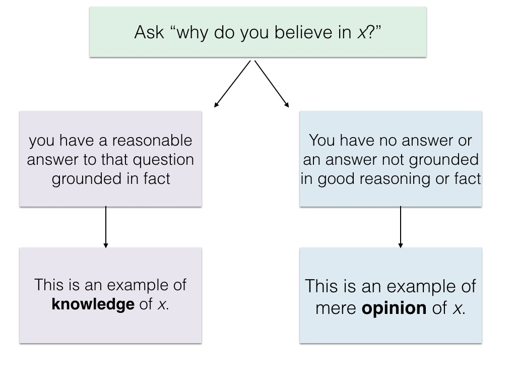 Flow chart which distinguishes knowledge from opinion.