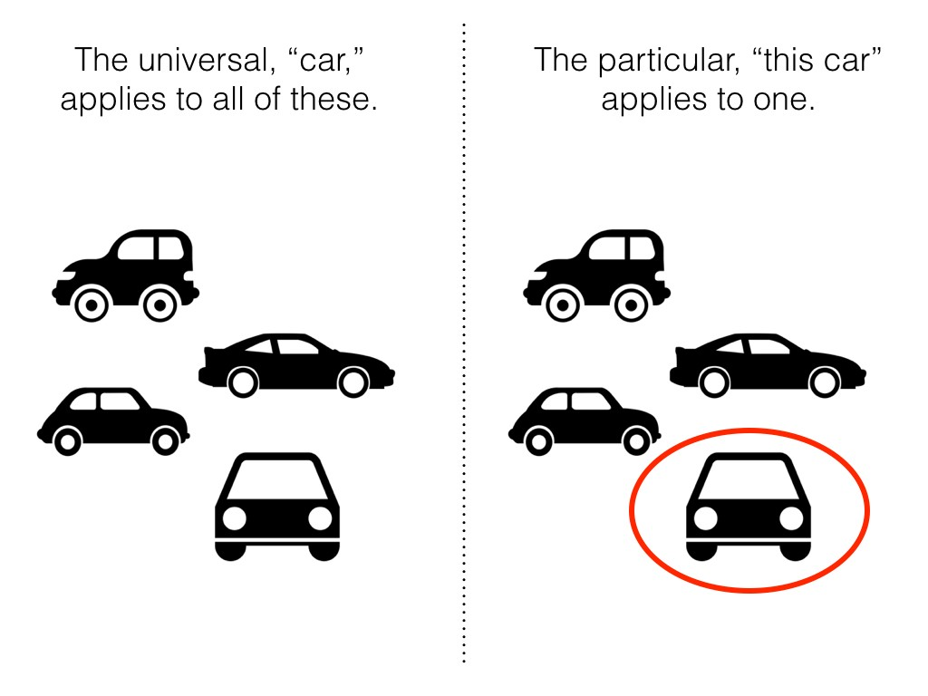This diagram helps to visually differentiate between universals and particulars. While the universal