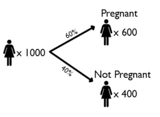 Tree Diagram: 60% Pregnant, 40% Not Pregnant