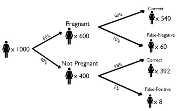 Tree Diagram: False Negative and False Positive of Pregnancy Tests