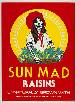 Sun Mad Raisins by Ester Hernández1982Screen print