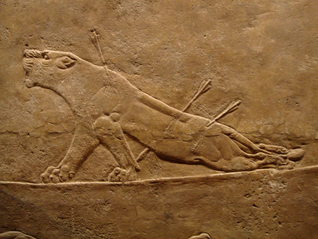 Dying Lioness from Ashurbanipal Palace, Ninevah~645 BCRelief carving on alabaster (stone)