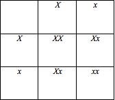 File:7187-punnett_chart.png