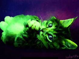 Raise Saturation Cat
