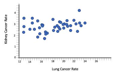 Lung Cancer vs Kidney Cancer