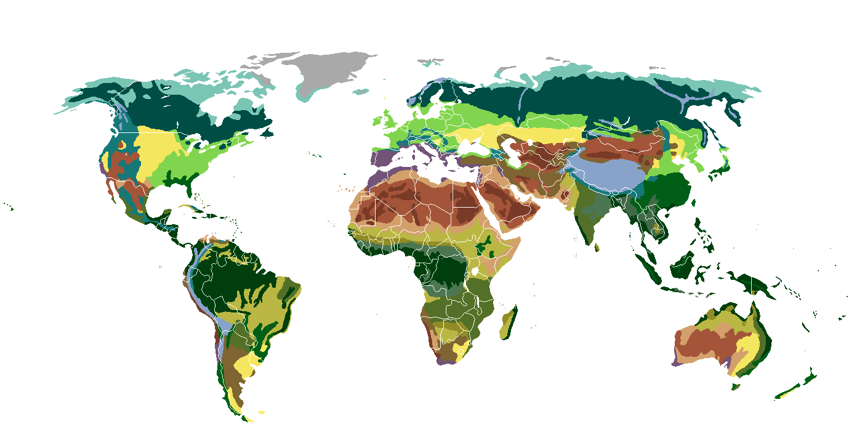 World Map of Biomes