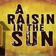 A Raisin in the Sun: A Video Introduction
