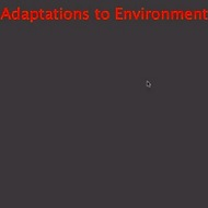 Organisms: Adaptations to Environment