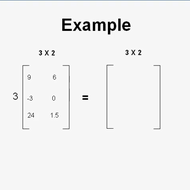 Applying Scalar Multiplication