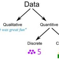 Qualitative versus Quantitative Data