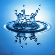 Ch 23.1 Fresh Water