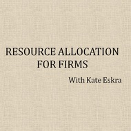 Resource Allocation for Firms
