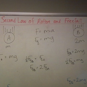 Newton's Second Law of Motion & Free Fall