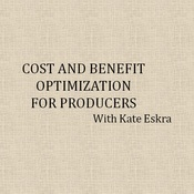 Cost and Benefit Optimization for Producers