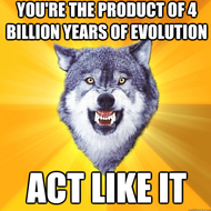 Intro to Evolution, Natural Selection