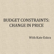 Budget Constraints: Change in Price