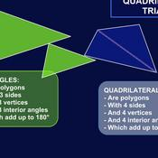Quadrilaterals and Triangles
