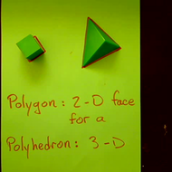 Polyhedral Faces
