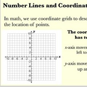 Number Lines and Coordinate Systems