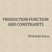 Production Function and Constraints