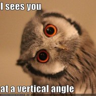(9/17) 2-1 Angle Pairs
