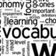 Vocabulary Overview/Word Busting
