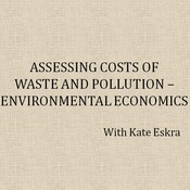 Assessing Costs of Waste and Pollution--Environmental Economics