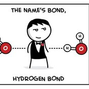 Macromolecules and Biochemistry