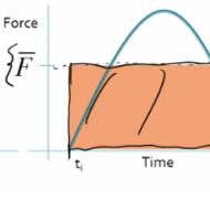 Average Force