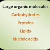 Overview of Organic Compounds
