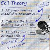 History of the Cell Theory (7.1)