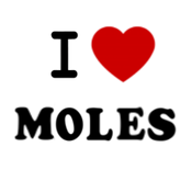 My MOLE and Me